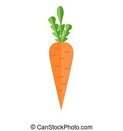 Fresh carrot vector flat illustration. Carrot for vitamin salad. Summer vegetables.