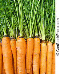 Fresh carrots - A pile of beautiful carrots on a counter