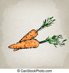 Fresh carrots. Vector illustration