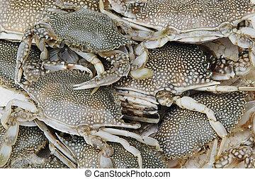 Fresh caught crabs at a local fish market in Rio de Janeiro,...