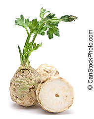 Fresh celery with root