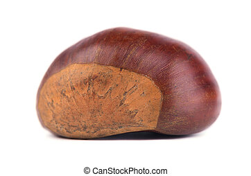 Fresh chestnuts isolated on white background. Hippocastanum isolated. Chestnut with clipping path. Macro