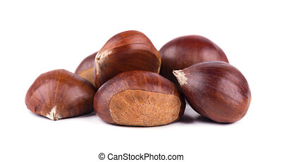 Fresh chestnuts isolated on white background. Hippocastanum isolated. Chestnut with clipping path