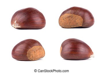 Fresh chestnuts isolated on white background. Hippocastanum isolated. Isolated chestnut set with clipping path. Macro