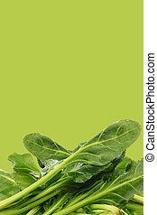 fresh chinese spinach