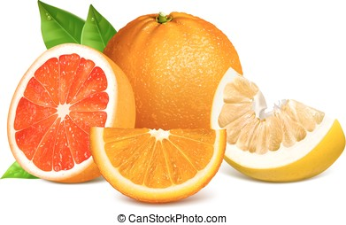 Fresh citrus fruits with leaves.