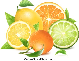 Fresh citrus with leaves. Orange. Lemons and another fruits...
