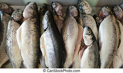 Fresh cleaned trout lay on the table