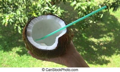 Fresh coconut - Closeup female hand holding fresh coconut...