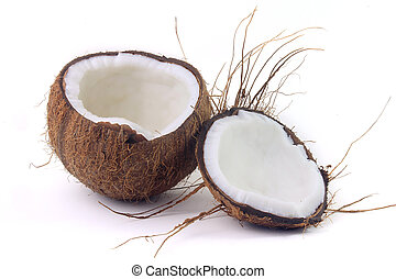 fresh coconut cut in half isolated on white background