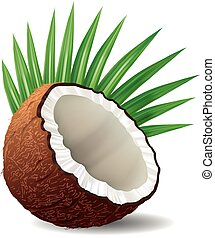fresh coconut with leaves isolated on white