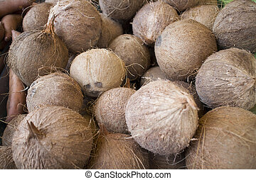 fresh coconuts at open air market