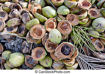 Fresh Coconuts with leaves background