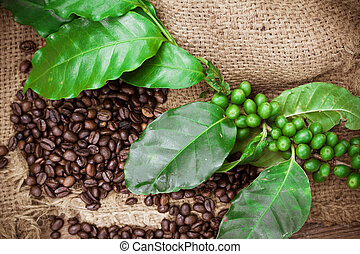 Fresh coffee beans on canvas texture background, Macro close-up for design work