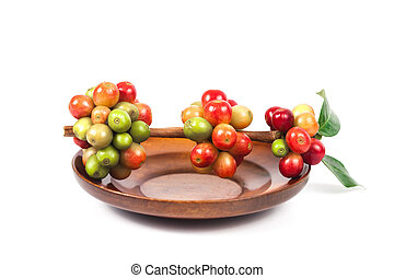 fresh coffee beans on dry coffee beans in wood dish.