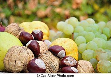 Fresh colorful autumn fruits