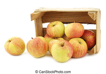 fresh cooking apples in a wooden crate