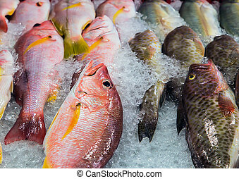 fresh cool fish ice at street market. Seafood on ice, background Sea food