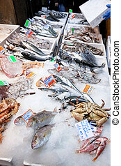 fresh cool fish on ice at street market