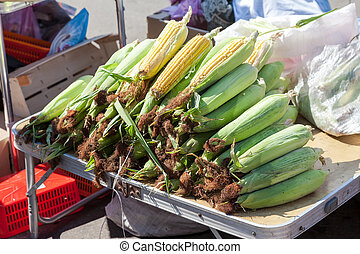 Fresh corn for sale at the local farmers market