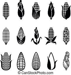 Fresh corn harvest vector icons set