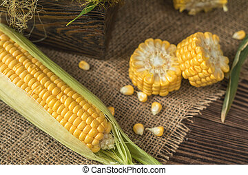 Fresh corn on cobs on rustic wooden table, top view. Dark wooden background freshly harvested organic corn.