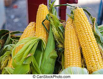 Fresh corn on cobs on sale in sicilian market