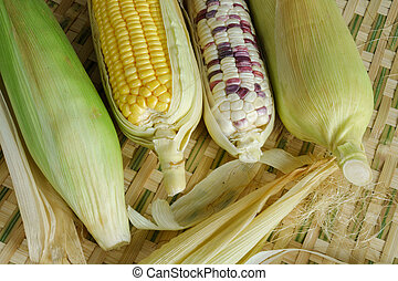 Fresh corn on the bamboo basketry background