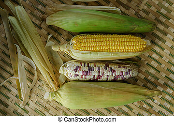 Fresh corn on the bamboo basketry background, Top view