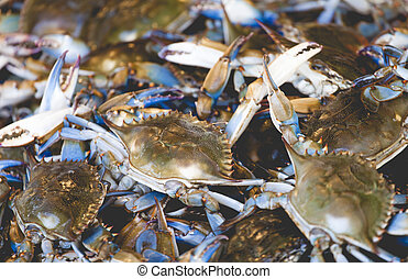 Fresh crab at American fish market