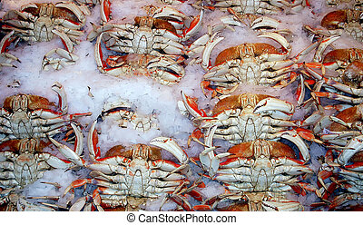 Fresh crab.
