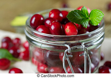 Fresh cranberries close-up. Small depth of field