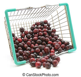 Fresh Cranberry isolated on white - Cranberries out a ...