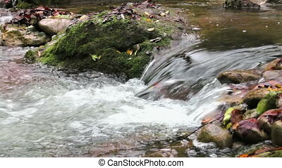 Mediterranean River Cascades in Autumn Beautiful and awesome winding creek. Mighty and meandering stream under the rain in Fall. Natural landscape of the Garrotxa, Girona.
