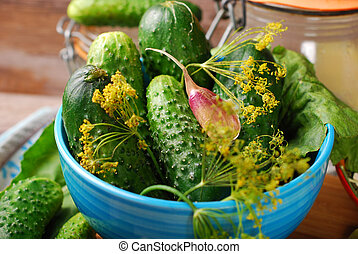 fresh cucumbers and ingedients for homemade gherkin - bowl ...
