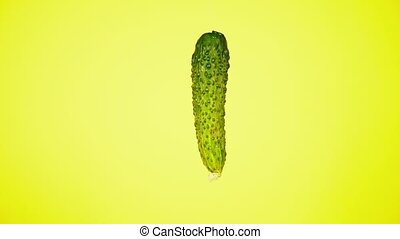 Fresh cucumbers fall with drops of water. The concept of nutrition. Isolate on a yellow background, slowdown