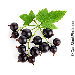 fresh currant fruits with green leaves isolated on white...