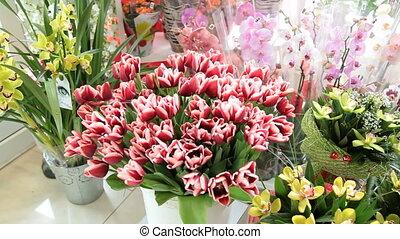 Fresh cut flowers bouquets in flower shop