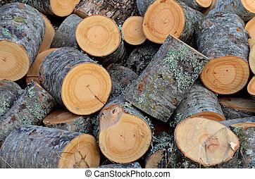 Fresh cut of a fire wood logs