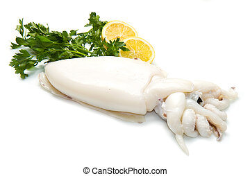 fresh cuttlefish with parsley and lemon isolated on white