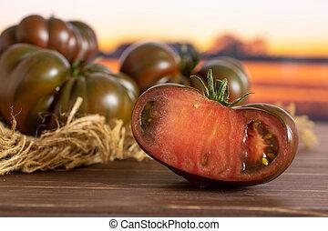 Fresh dark tomato primora with autumn field behind