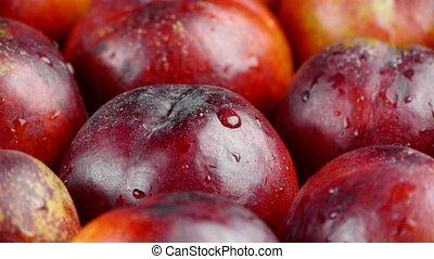 Fresh delicious nectarines