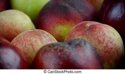 Fresh delicious peaches & nectarine