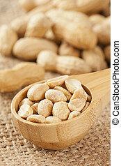 Fresh Dry Organic Peanuts against a background
