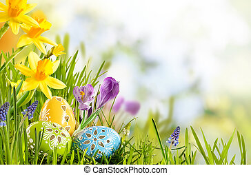 Fresh Easter background in a spring meadow