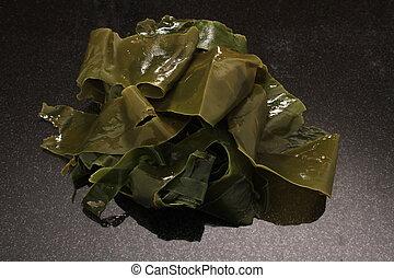 edible sea kelp - fresh edible sea kelp