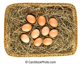Fresh eggs in straw basket isolated
