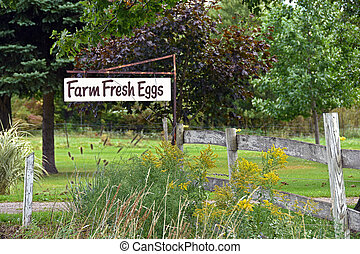 fresh farm egg sign