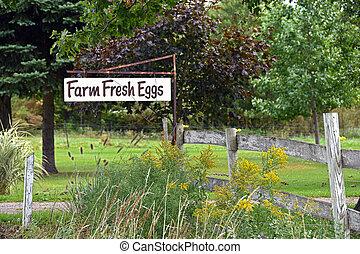 fresh farm egg sign