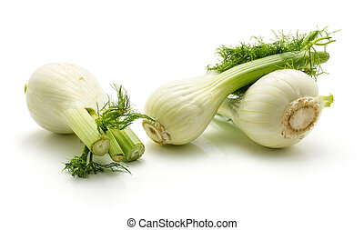 Fresh fennel isolated on white - Florence fennel isolated on...